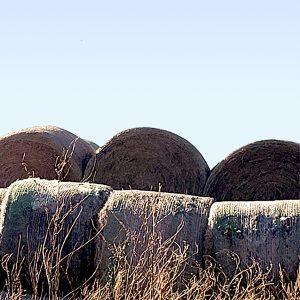 large-bales